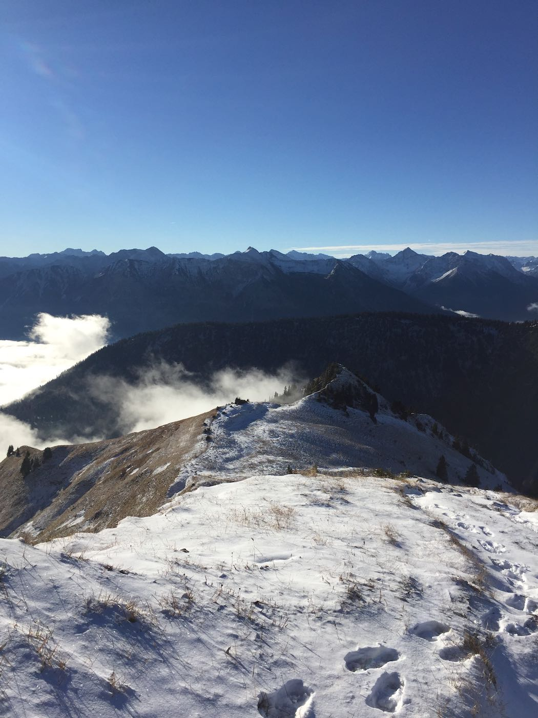 Kurz vor der Krinnenspitze - Blick zurück